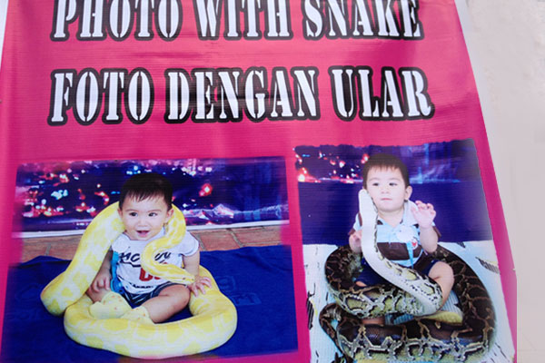 Photo with snake...