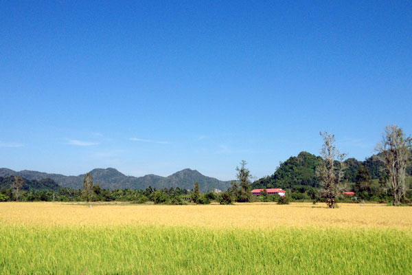 just before the hills up to Thai border